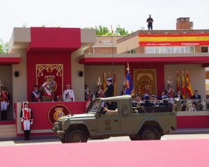 dia-fuerzas-armadas-6